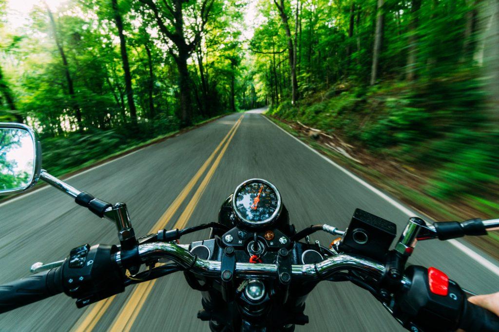 לוח שעונים של אופנוע הנוסע בתוך היער